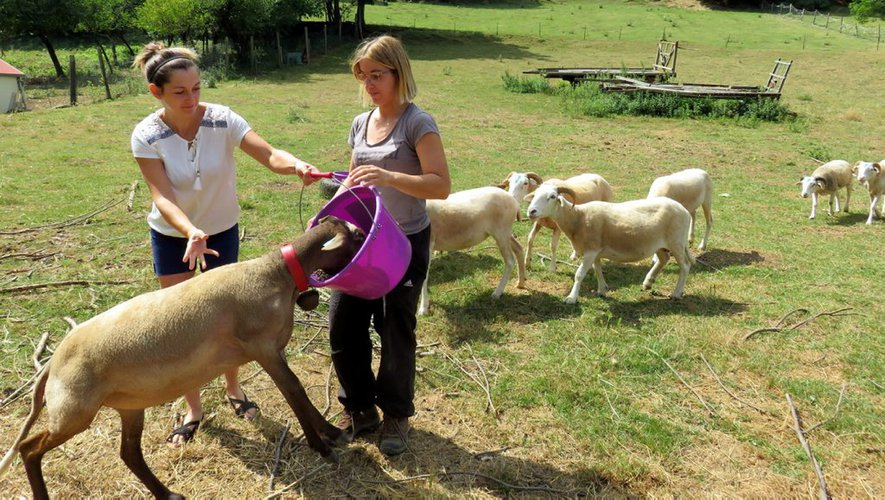 agricultrice- Rencontre femme AGRICULTRICE . Inscription GRATUITE,